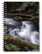 Wilson Creek #18 With Added Cedar Waxwing Spiral Notebook