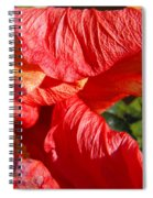 Wilting Hibiscus Two Spiral Notebook