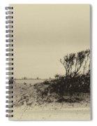Wind Grown Beach Trees Spiral Notebook