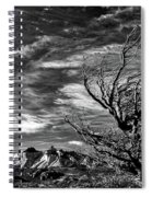 Wind Shaped Tree #2 - Patagonia Spiral Notebook