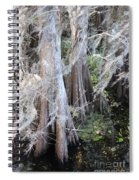 Wind Through The Cypress Trees Spiral Notebook