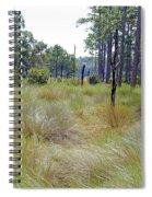 Windblown Grass Spiral Notebook