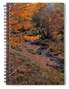 Winding Brook Spiral Notebook