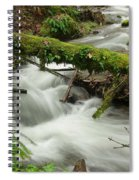 Winding Creek With A Mossy Log Spiral Notebook