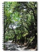 Winding Road Santa Ynez Mountains Spiral Notebook