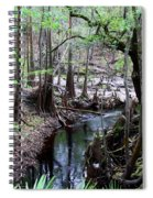 Winding Sopchoppy River Spiral Notebook