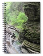 Water Falling Throughout The Gorge Spiral Notebook