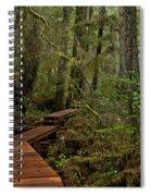 Winding Through The Willowbrae Rainforest Spiral Notebook
