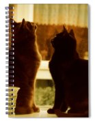 Window Cats Spiral Notebook
