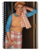 Window Cleaner Spiral Notebook