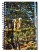 Window Reflection Spiral Notebook