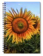 Window To The Sunflower Fields Oil Painting Spiral Notebook