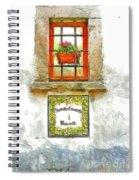 Window With Flower Pot Spiral Notebook