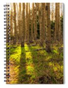 Windsor Trail At Dusk - Santa Fe National Forest New Mexico Spiral Notebook