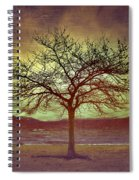 Windstorm At Skaha Lake Spiral Notebook