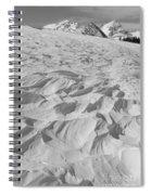 Windswept 3 Spiral Notebook