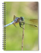 Windswept Dragonfly Spiral Notebook