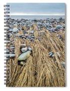 Windswept Grass At Lawrencetown Beach, Nova Scotia Spiral Notebook