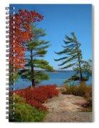 Windswept Point In Killbear Spiral Notebook
