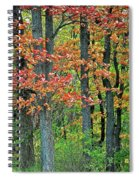 Windy Day Autumn Colors Spiral Notebook