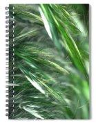 Windy Fractal Field Spiral Notebook