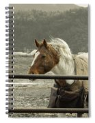 Windy In Mane Spiral Notebook