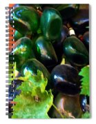 Wine And Grapes Full Circle Spiral Notebook