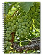 Wine Grapes Spiral Notebook