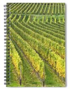 Wine Growing Spiral Notebook