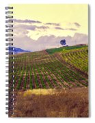 Wine Vineyard In Sicily Spiral Notebook