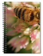 Wing And A Prayer Spiral Notebook