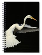 Wing Grace Spiral Notebook