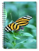 Wing Wonders Spiral Notebook