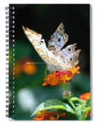 Winged Butter Spiral Notebook