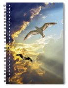 Wings Against The Storm Spiral Notebook