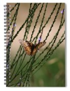 Wings Aglow  Spiral Notebook