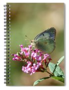 Wings And Petals Spiral Notebook