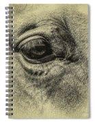 Wink Spiral Notebook