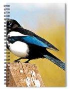 Winking Magpie Spiral Notebook