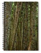 Winner Creek Trail Spiral Notebook