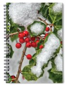 Winter - Ice Coated Holly Spiral Notebook