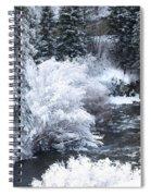 Winter Along The Creek Spiral Notebook