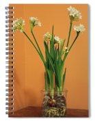 Winter Beauty I Spiral Notebook