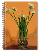 Winter Beauty II Spiral Notebook