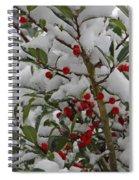 Winter Berries In Watercolor Spiral Notebook