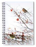 Winter Birds 1 Spiral Notebook
