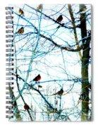 Winter Birds 2 Spiral Notebook