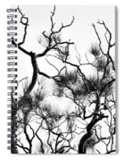 Winter... Black And White Spiral Notebook