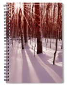 Winter Bling Spiral Notebook