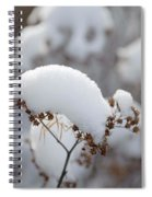 Winter Bloom Spiral Notebook